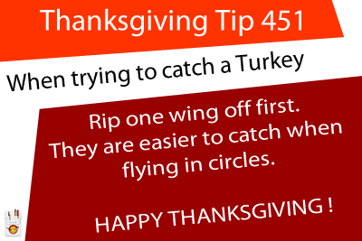 Thanksgiving Tip 451